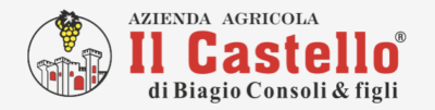 logo Il Castello new